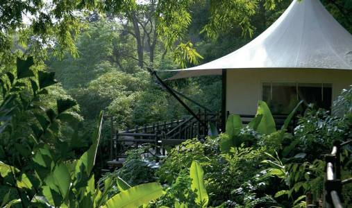 Four Seasons Tented Camp Golden Triangle - Photo #6