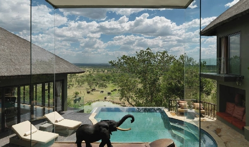 Four Seasons Serengeti - Photo #14