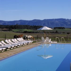The Carneros Inn - Photo #8