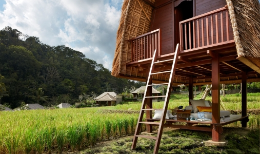 Mandapa, A Ritz-Carlton Reserve - Photo #10