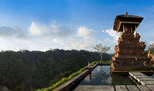 Mandapa, A Ritz-Carlton Reserve - Photo #7