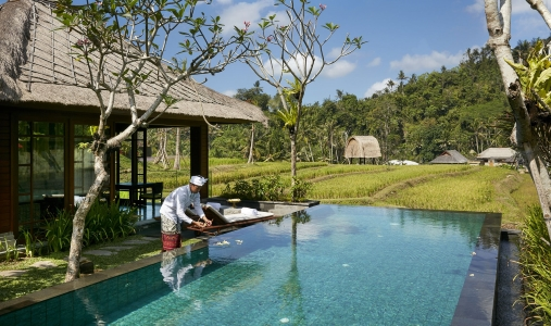 Mandapa, A Ritz-Carlton Reserve - Photo #8