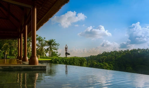 Mandapa, A Ritz-Carlton Reserve - Photo #12