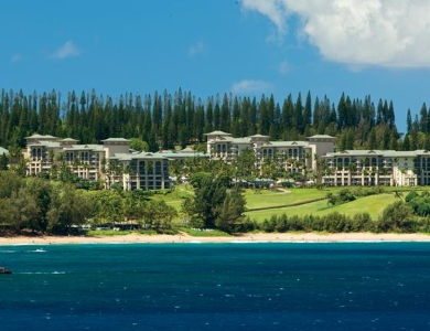 The Ritz-Carlton Kapalua - Photo #2