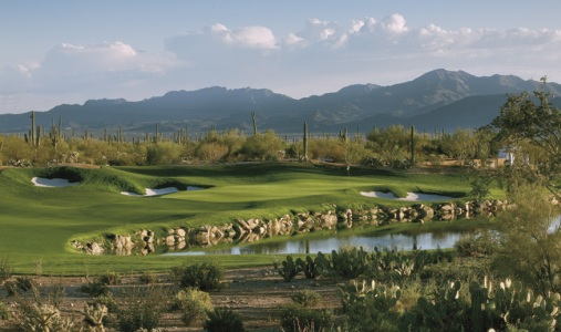 The Ritz-Carlton Dove Mountain - Photo #9