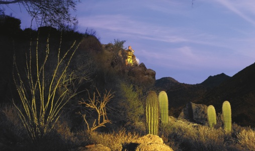 The Ritz-Carlton Dove Mountain - Photo #15