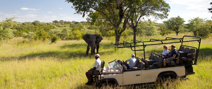 Ulusaba Private Game Reserve - Photo #13