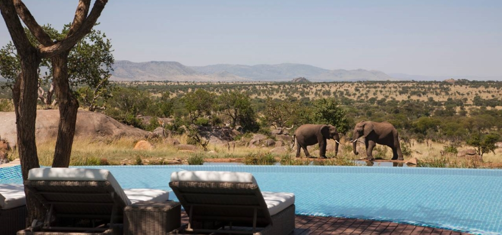 The Four Seasons' Safari & Sand - Photo #3